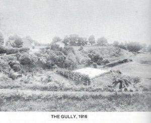 The Gully